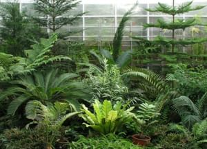 Ботанический сад Пермского государственного университета