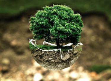 Информационный час «Экология: тревоги и надежды»