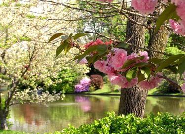 Выставка «Мгновения весны»