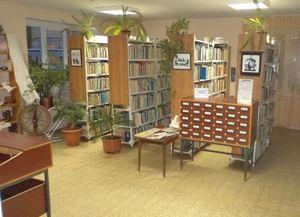 Модельная библиотека № 4 г. Старый Оскол