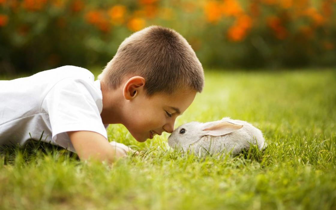 Ребенок и природа картинки