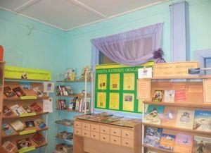 Сосновская сельская библиотека с. Новый Тап