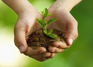 Конкурс «Защитим природу вместе!»