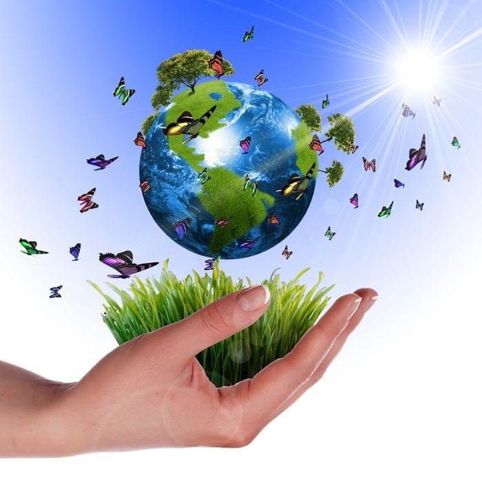 день экологии в картинках продукция