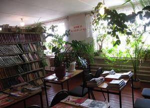 Старокриушанская сельская библиотека № 1