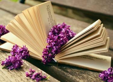 Литературный винегрет «Книга. Экология. Красота»