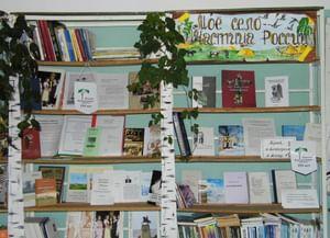 Больше-Константиновская сельская библиотека
