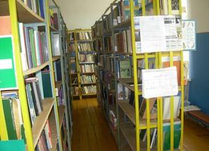 Старо-Максимкинская сельская библиотека