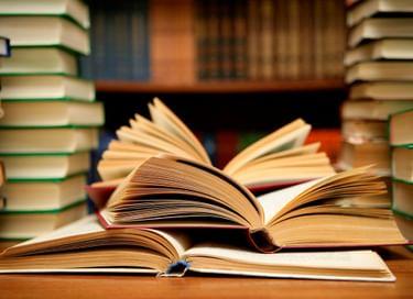 Лекция «Страницы истории отечественного литературоведения: В. Е. Евгеньев-Максимов»