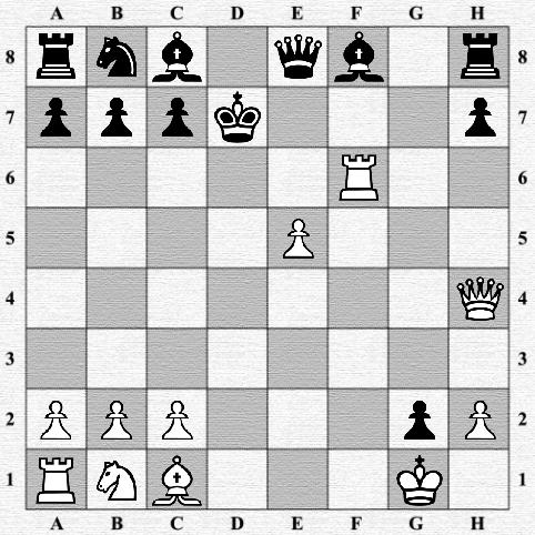 Шахматы 1