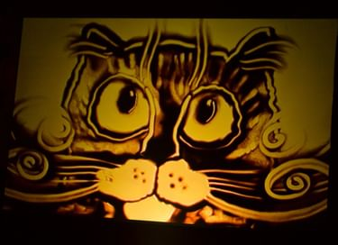 Ночь музеев «Путешествие в волшебный мир кошек»