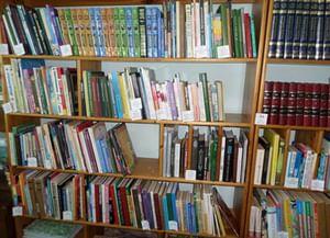 Центральная районная детская библиотека с. Большая Черниговка