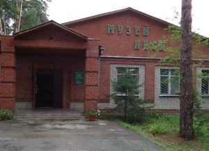 Муниципальная библиотека «Лесная»