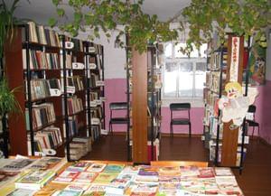 Новотроицкая сельская библиотека