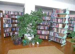 Кривецкая сельская библиотека филиал № 19