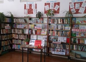 Белосельская сельская библиотека-филиал № 2