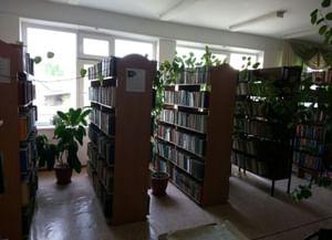 Библиотека-филиал № 11 с. Закан-Юрт
