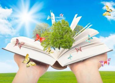 Литературная игра «Солнце на книжной обложке»