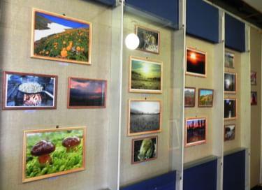 Персональная выставка фотографа-натуралиста А. Распутина