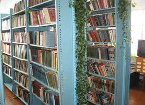 Библиотека-филиал с. Старица