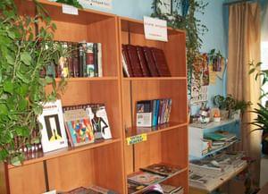 Библиотека-клуб д. Новиково
