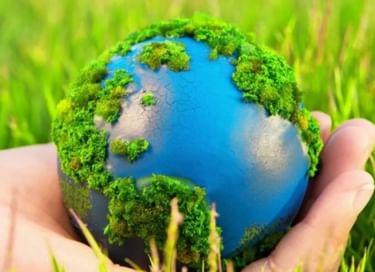 Экологическое лото «Оглянись вокруг»