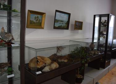 Выставка «Братья наши меньшие»