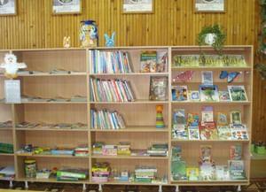 Бакчарская детская библиотека-филиал