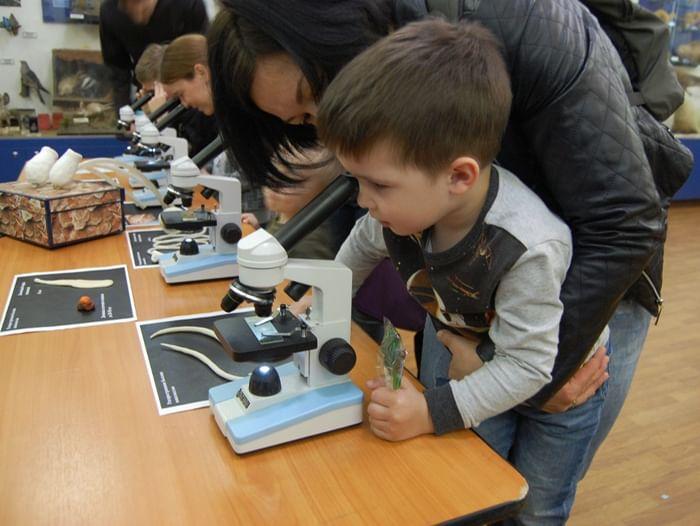 Цикл занятий для детей «Лето под микроскопом»