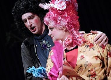 Опера «Тайный брак»