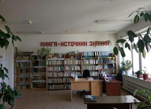 Библиотека-филиал № 4 с. Новый Шарой