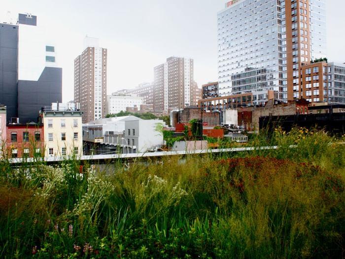 Выставка «Современный город. Экология. Человек»