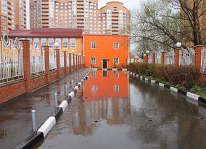 Сельская библиотека-филиал № 4 пос. Совхоз им. Ленина