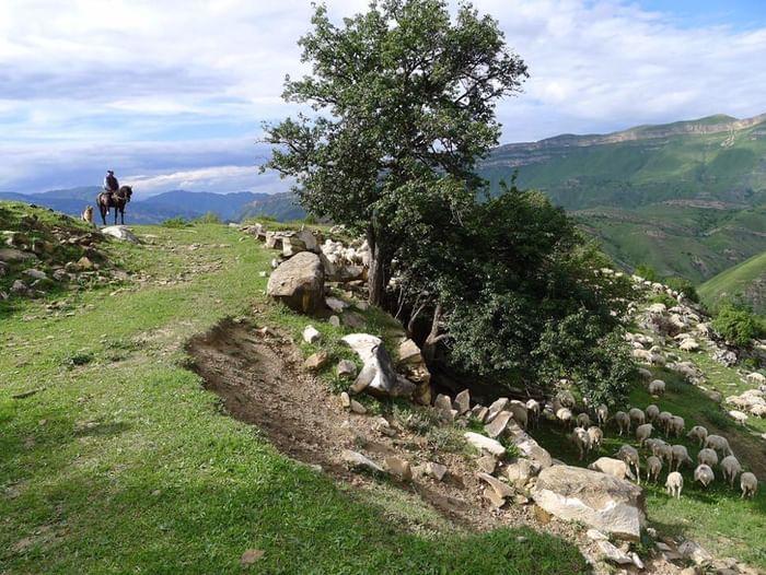 Открытие фотовыставки «Дагестан 360°»