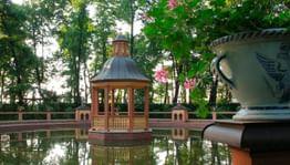В Санкт-Петербурге открылся фестиваль «Императорские сады России»