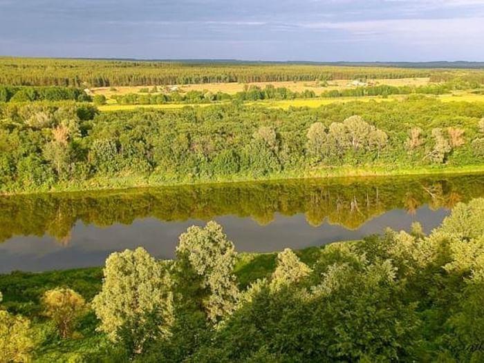 Природа Воронежа