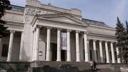 Проект «Homo virtualis» стартовал в Пушкинском музее