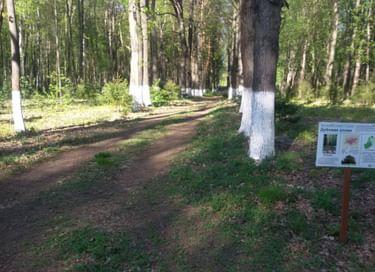 Передвижная фотовыставка «Прогулки по Ерлинскому парку»