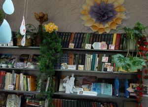 Болховская сельская библиотека