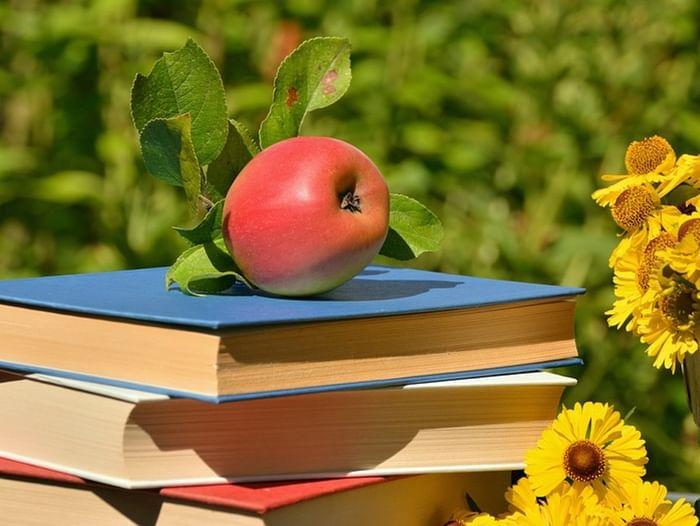 Всероссийская акция «Летнее чтение»