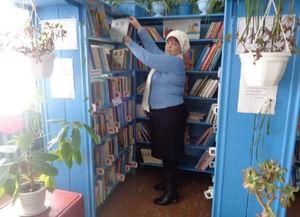 Библиотека с. Малая Боёвка