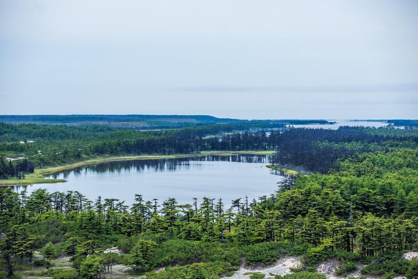 Южный Сахалин — японское губернаторство Карафуто