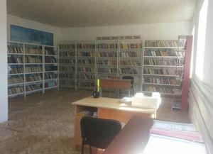 Ново-Энгенойская сельская библиотека-филиал № 29