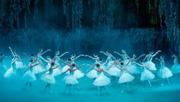 В Москве откроется выставка, посвященная 140-летию балета «Лебединое озеро»