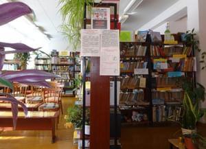 Совьинская библиотека-филиал