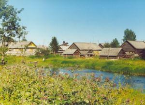Традиционные представления о растениях и животных в деревне Тихманьга Каргопольского района Архангельской области