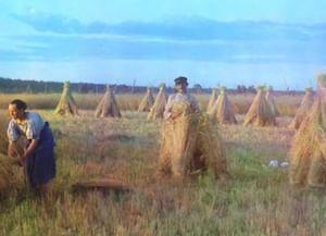 Жатвенная обрядность северно-псковской традиции