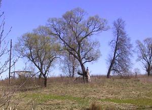 Похоронный обряд деревни Черёмуха Клетнянского района Брянской области