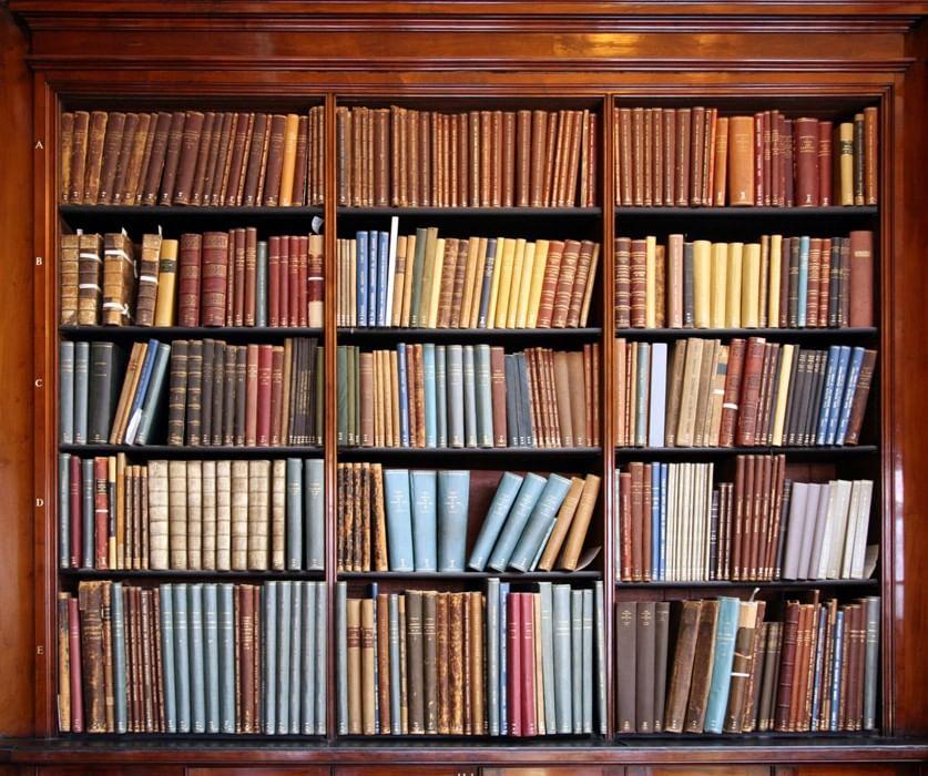Картинки книги на стеллажах в библиотеке