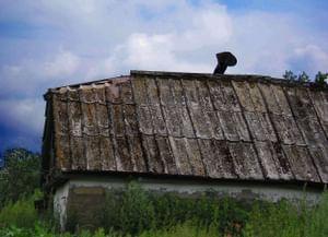 Традиционные технологии саманных построек в селе Верхняя Луговатка Верхнехавского района Воронежской области